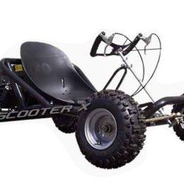 ScooterX 163cc Sport Kart Go Kart