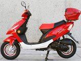 "50cc 4 stroke Style 10"" MC_JL8 gas scooter FREE Trunk & Windshield"