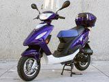 50cc 4 stroke Style 10