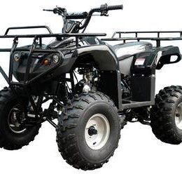 Mid-Sized Spider 125cc Utility ATV