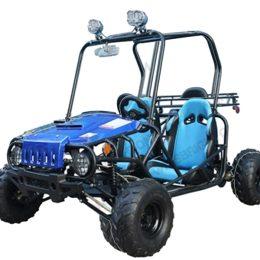 Jeep Auto-blue
