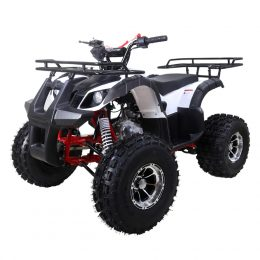 TT125ATV-NEWTFORCE-2 (1)