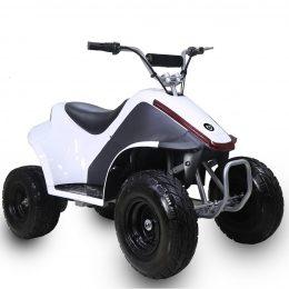 TT500EATV-Rover-2