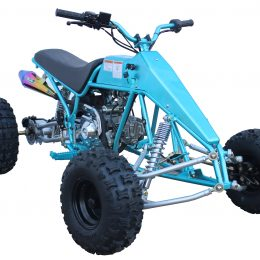 2019-New-sale-EPA-4-wheel-quad